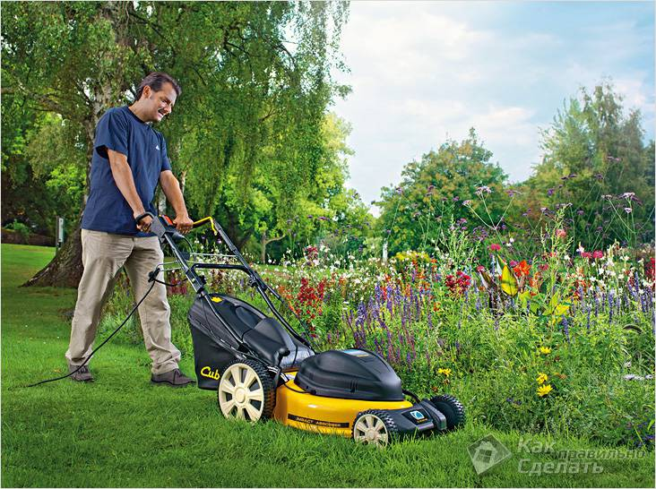 Как выбрать газонокосилку